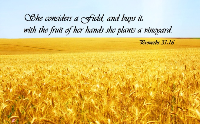 proverbs-31-field